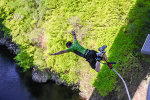 Picture of Bungee Jumping